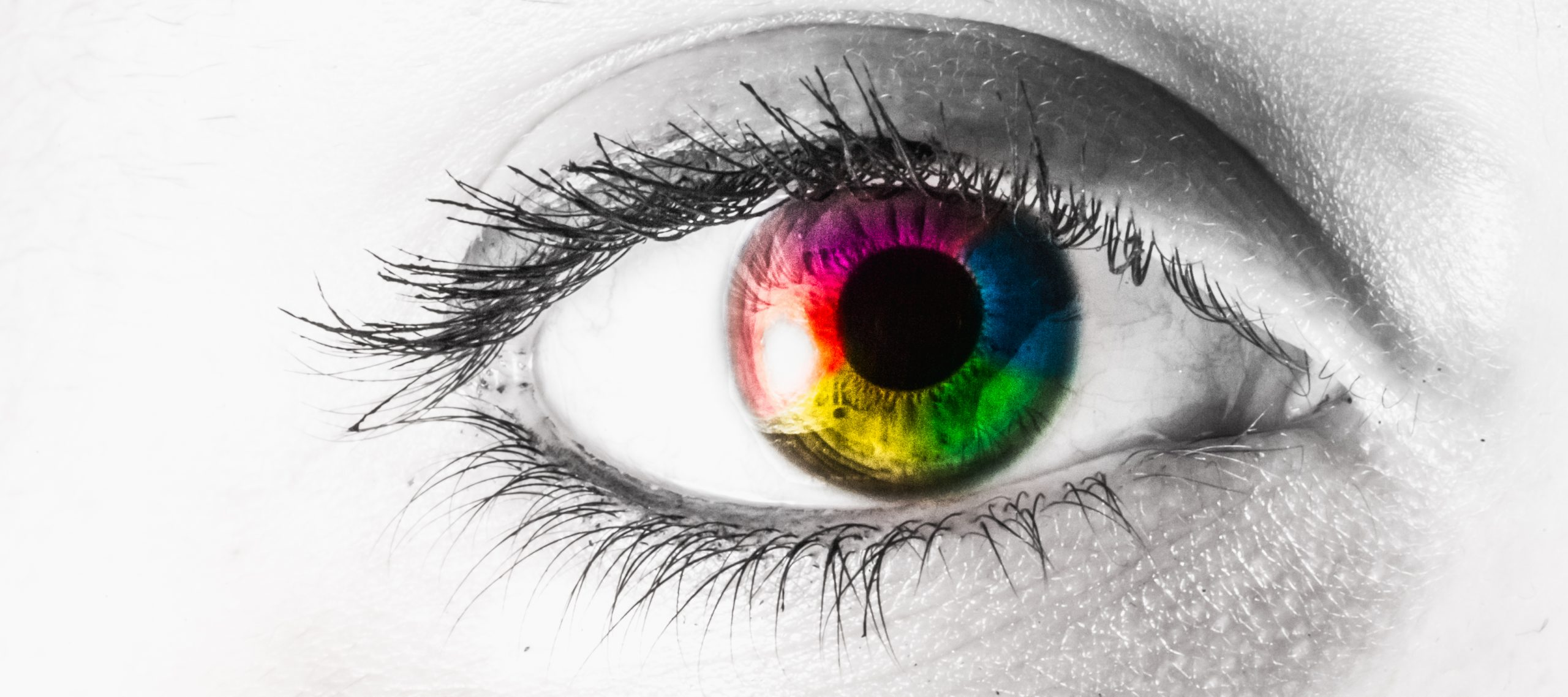 macro eye colored rainbow with white copy space. Letterbox.